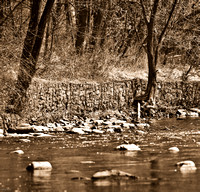 River Of Sepia