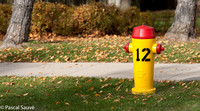 Fire Hydrant #12